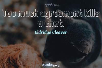 Photo Quote of Too much agreement kills a chat.