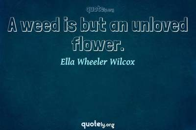 Photo Quote of A weed is but an unloved flower.