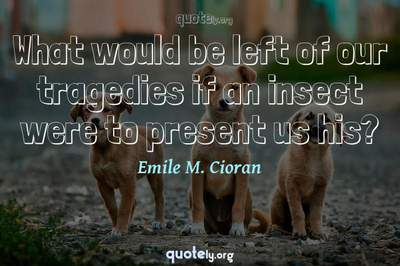 Photo Quote of What would be left of our tragedies if an insect were to present us his?