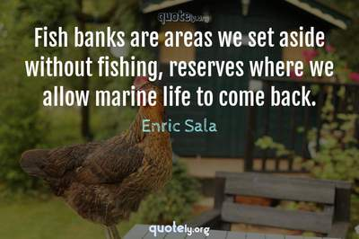 Photo Quote of Fish banks are areas we set aside without fishing, reserves where we allow marine life to come back.