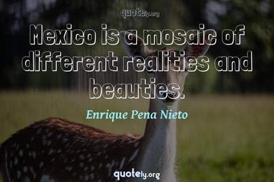 Photo Quote of Mexico is a mosaic of different realities and beauties.