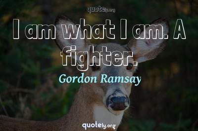 Photo Quote of I am what I am. A fighter.