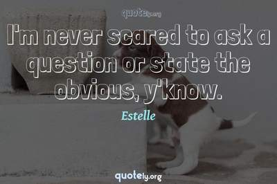 Photo Quote of I'm never scared to ask a question or state the obvious, y'know.