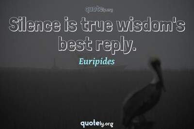 Photo Quote of Silence is true wisdom's best reply.