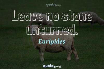 Photo Quote of Leave no stone unturned.
