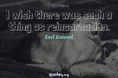 Photo Quote of I wish there was such a thing as reincarnation.