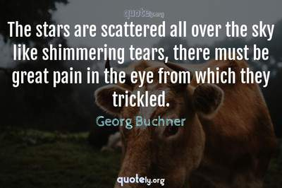 Photo Quote of The stars are scattered all over the sky like shimmering tears, there must be great pain in the eye from which they trickled.