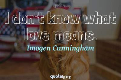 Photo Quote of I don't know what love means.
