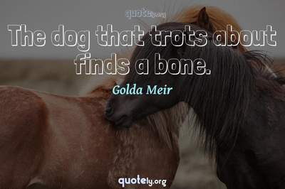 Photo Quote of The dog that trots about finds a bone.