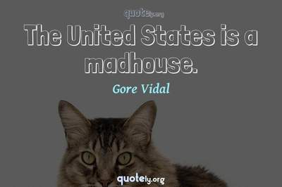 Photo Quote of The United States is a madhouse.