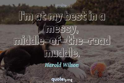Photo Quote of I'm at my best in a messy, middle-of-the-road muddle.