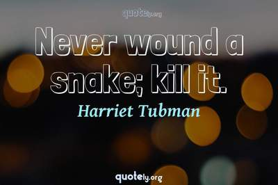 Photo Quote of Never wound a snake; kill it.