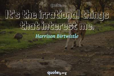 Photo Quote of It's the irrational things that interest me.
