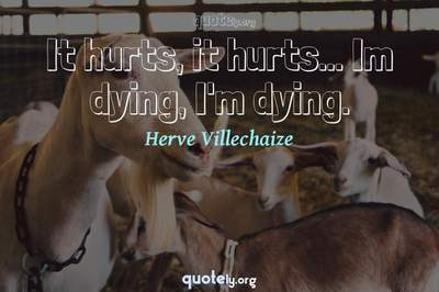 Photo Quote of It hurts, it hurts... Im dying, I'm dying.