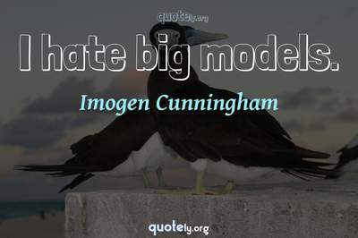 Photo Quote of I hate big models.