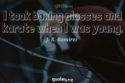 Photo Quote of I took boxing classes and karate when I was young.