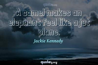 Photo Quote of A camel makes an elephant feel like a jet plane.