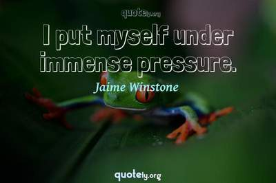 Photo Quote of I put myself under immense pressure.