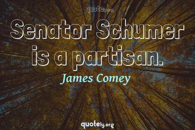 Photo Quote of Senator Schumer is a partisan.