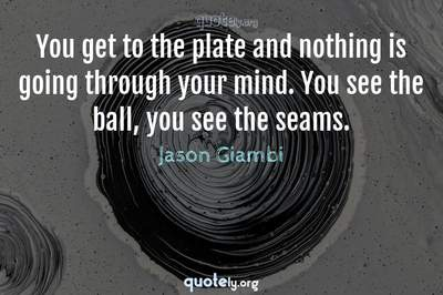 Photo Quote of You get to the plate and nothing is going through your mind. You see the ball, you see the seams.