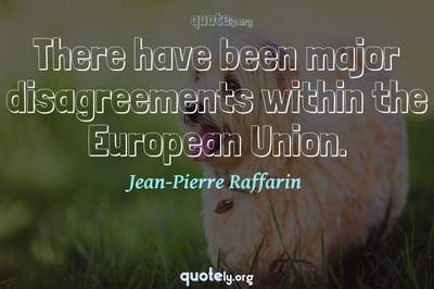 Photo Quote of There have been major disagreements within the European Union.
