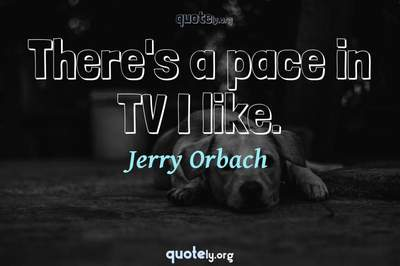 Photo Quote of There's a pace in TV I like.