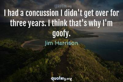 Photo Quote of I had a concussion I didn't get over for three years. I think that's why I'm goofy.