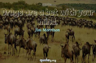 Photo Quote of Drugs are a bet with your mind.