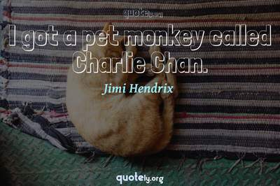 Photo Quote of I got a pet monkey called Charlie Chan.