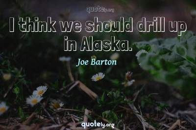 Photo Quote of I think we should drill up in Alaska.