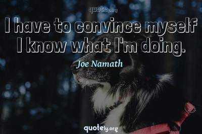 Photo Quote of I have to convince myself I know what I'm doing.