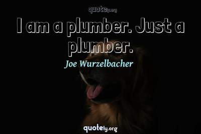 Photo Quote of I am a plumber. Just a plumber.