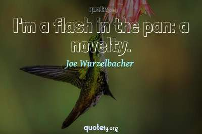 Photo Quote of I'm a flash in the pan: a novelty.