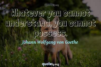 Photo Quote of Whatever you cannot understand, you cannot possess.