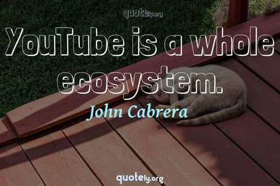 Photo Quote of YouTube is a whole ecosystem.