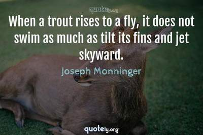 Photo Quote of When a trout rises to a fly, it does not swim as much as tilt its fins and jet skyward.