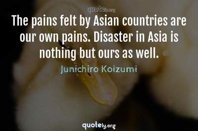 Photo Quote of The pains felt by Asian countries are our own pains. Disaster in Asia is nothing but ours as well.