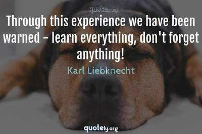 Photo Quote of Through this experience we have been warned - learn everything, don't forget anything!