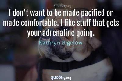 Photo Quote of I don't want to be made pacified or made comfortable. I like stuff that gets your adrenaline going.