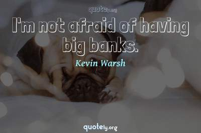 Photo Quote of I'm not afraid of having big banks.
