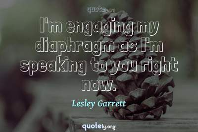 Photo Quote of I'm engaging my diaphragm as I'm speaking to you right now.