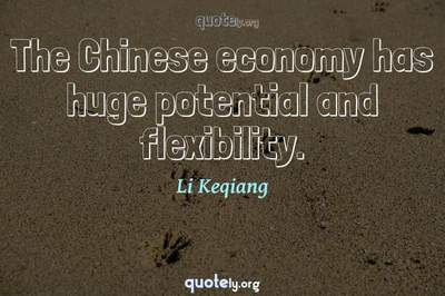 Photo Quote of The Chinese economy has huge potential and flexibility.