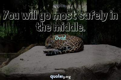 Photo Quote of You will go most safely in the middle.