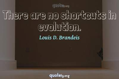 Photo Quote of There are no shortcuts in evolution.