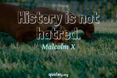 Photo Quote of History is not hatred.