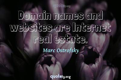 Photo Quote of Domain names and websites are Internet real estate.