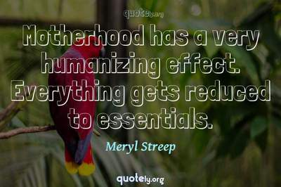 Photo Quote of Motherhood has a very humanizing effect. Everything gets reduced to essentials.