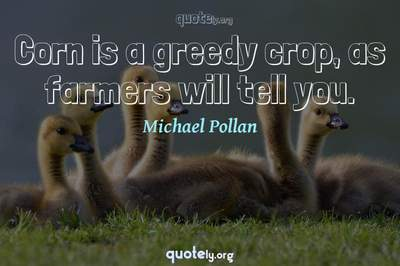 Photo Quote of Corn is a greedy crop, as farmers will tell you.