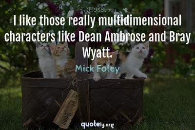Photo Quote of I like those really multidimensional characters like Dean Ambrose and Bray Wyatt.