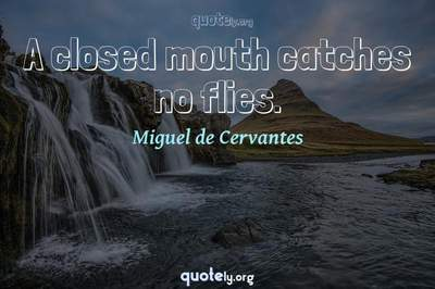Photo Quote of A closed mouth catches no flies.